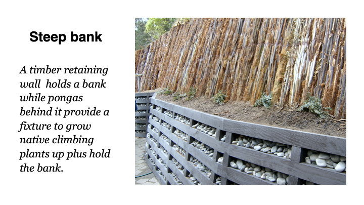 Steep bank - A timber retaining wall holds a bank while pongas behind it provide a fixture to grow native climbing plants up plus hold the bank.